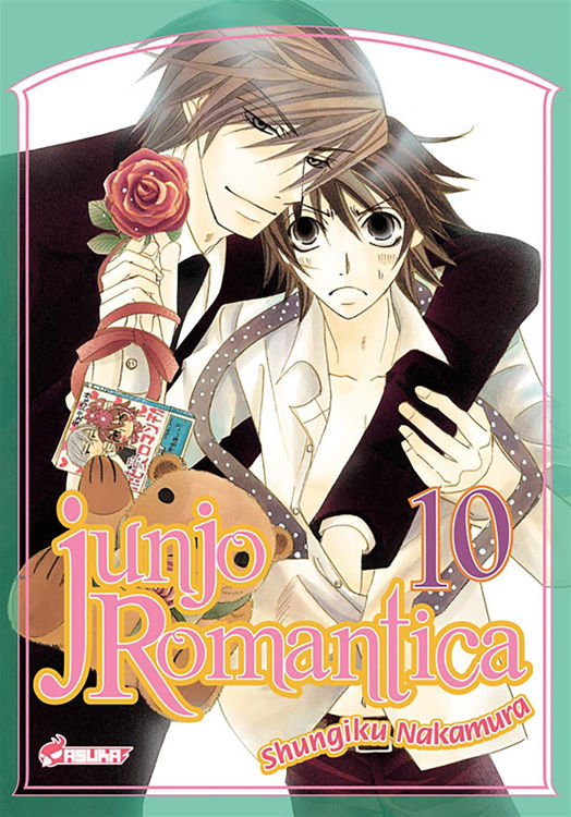 Image de Junjo Romantica Tome 10