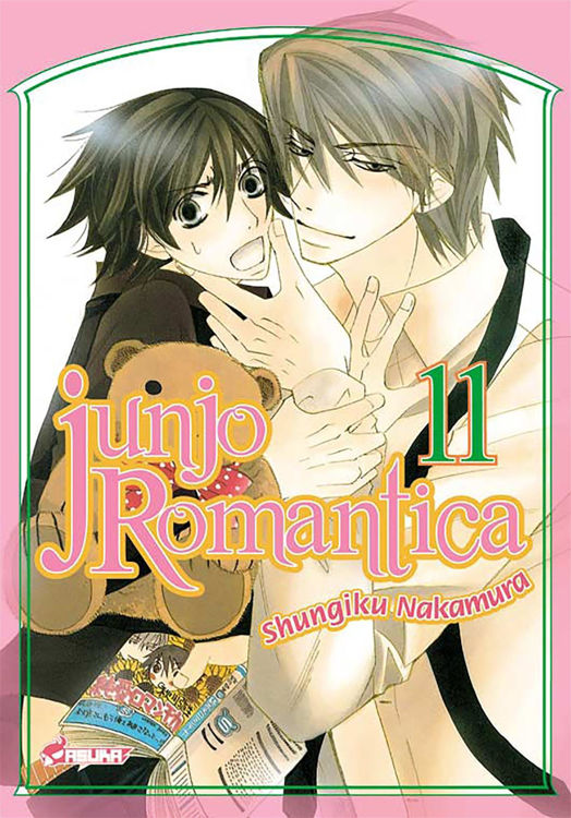Image de Junjo Romantica Tome 11