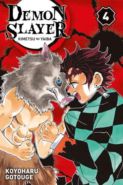 Image de Demon Slayer: Kimetsu no Yaiba Tome 04