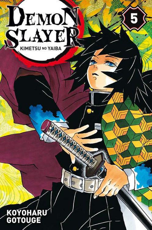 Image de Demon Slayer: Kimetsu no Yaiba Tome 05