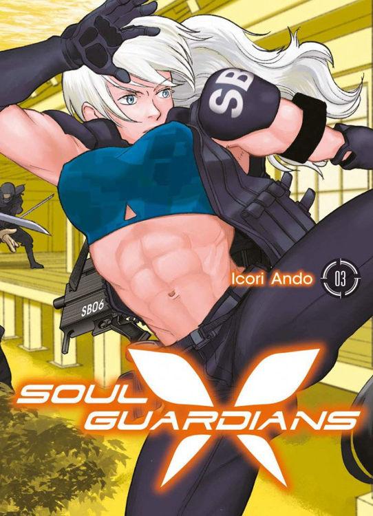 Soul Guardians Tome 03